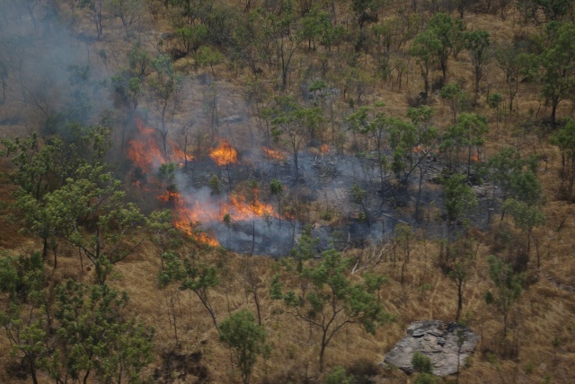 An early dry season fire in Kakadu National Park – are these fires burning up our mammals? Photo: Clay Trauernicht